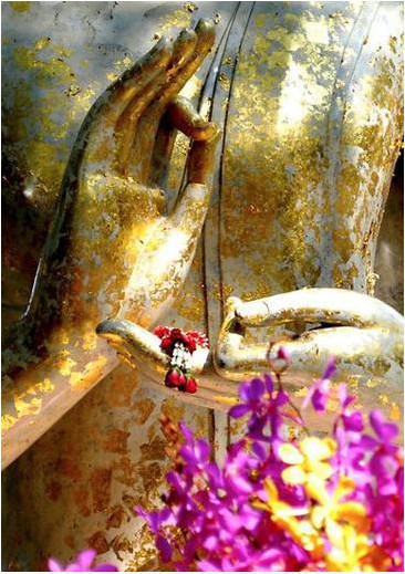 Mudra – La Danza dello Yoga