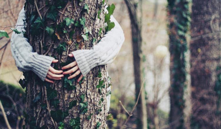 Dialogare con gli alberi è possibile